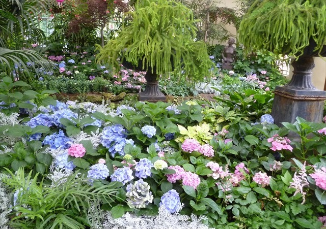 DISPLAY 1 - Hydrangea / Fuchsia  (5 of 7)